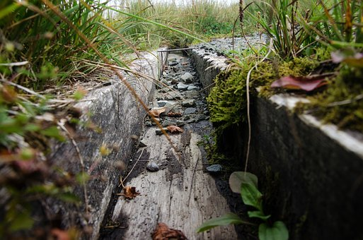 Gutter, Wood, Water, Rain, Grass, Old